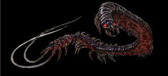 demon centipede