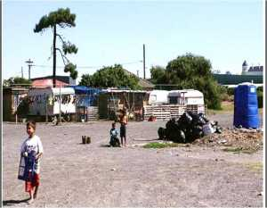 South Africa White squatter camps - Pretoria